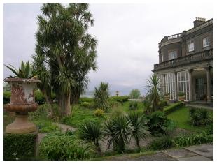 Ierland: tropische verrassingen aan de Ierse Rivièra